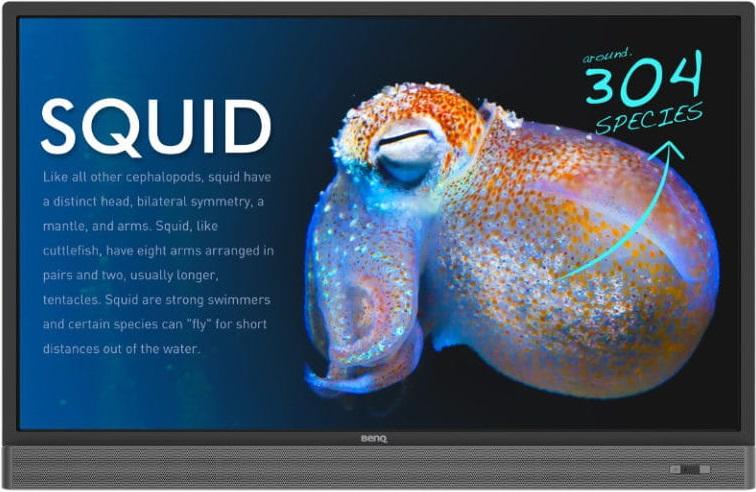 monitor interaktywny wygląd zewnętrzny